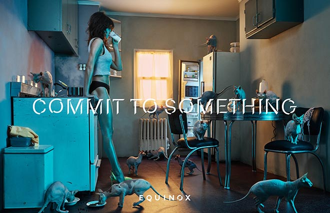 Equinox Commit to Something - Cat Lady